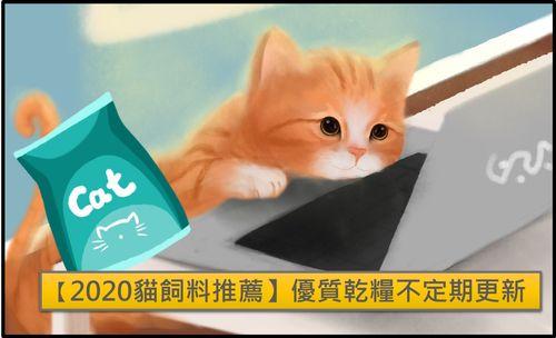 貓乾飼料推薦2020